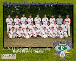 2011 State Tournament Team